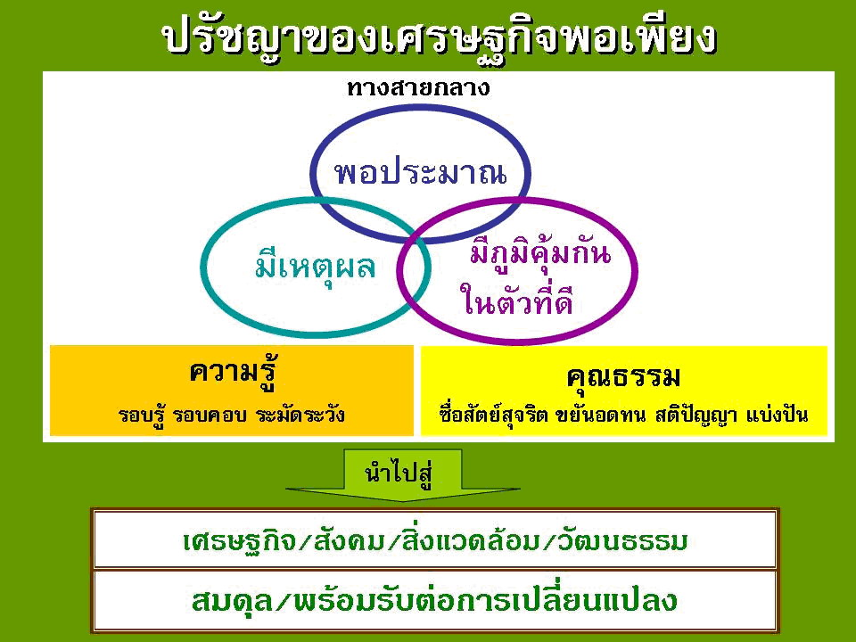 What does sufficiency economy mean? What should we do?
